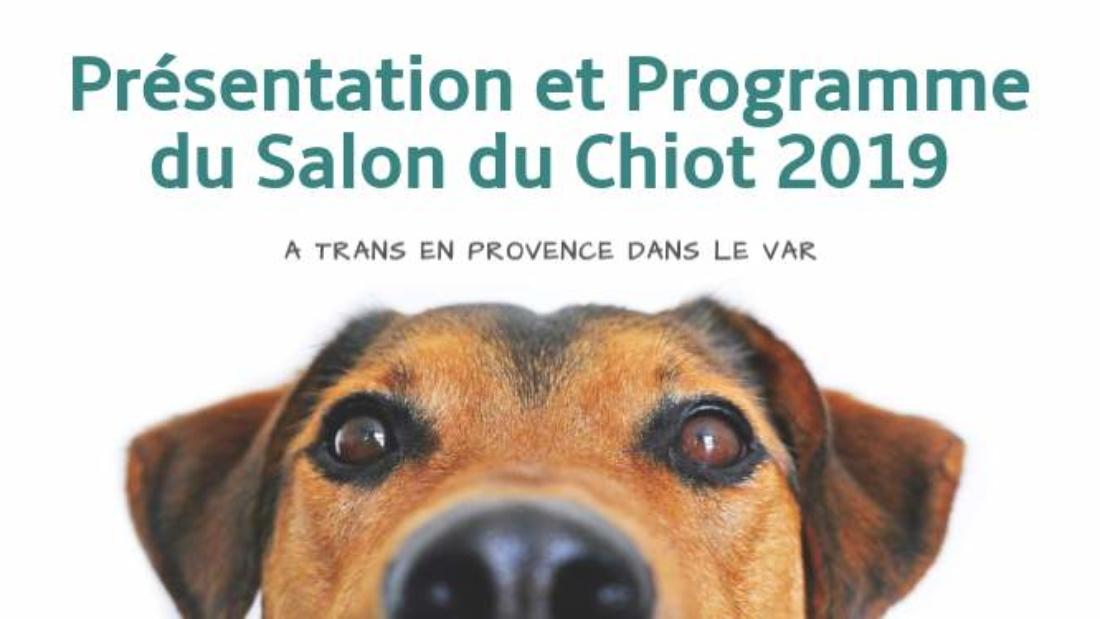 salon-du-chiot-00